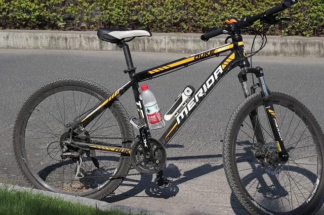 rower Merida