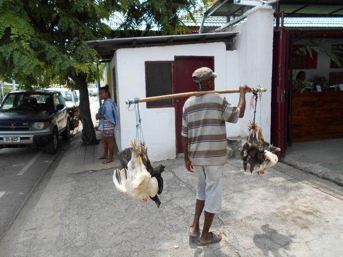 Sprzedawca żywych kur w Timorze Wschodnim