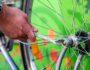 naprawianie roweru